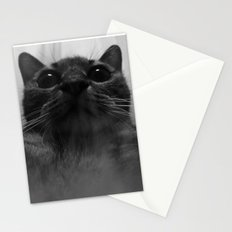 a cat Stationery Cards