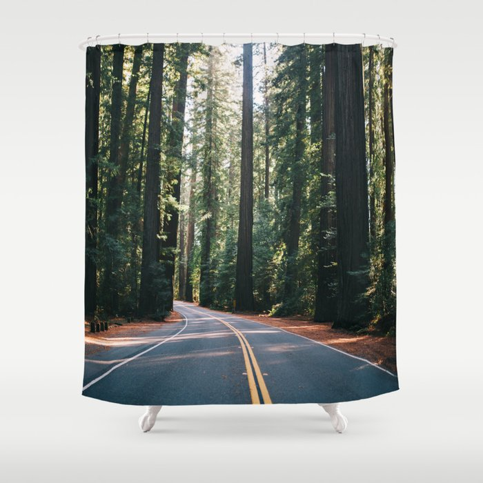 Avenue Of The Giants Shower Curtain By Tanahelene