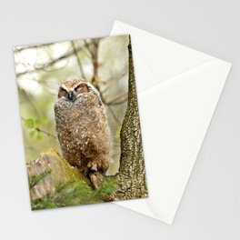 Sleeping in the Rain Stationery Cards
