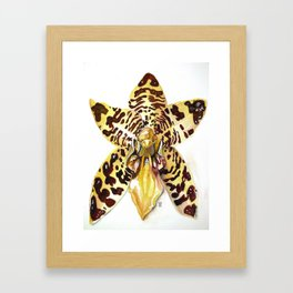Ansellia Africana Orchid Framed Art Print