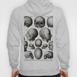 Ratio of Lobes Responsible for the Psychological Type of Person (Phrenology) Hoody