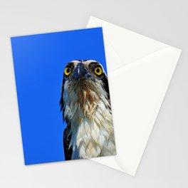 Morning Osprey Stationery Cards