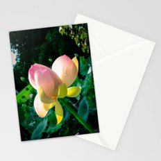 Blossom at the Grounds Stationery Cards