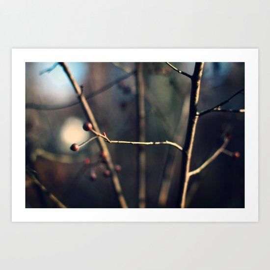 Winter Waits Art Print