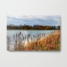 Autumn Swan Metal Print