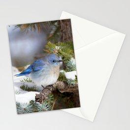 Watercolor Bird, Mountain Bluebird 10, Estes Park, Colorado, Enchanted Forest Stationery Cards