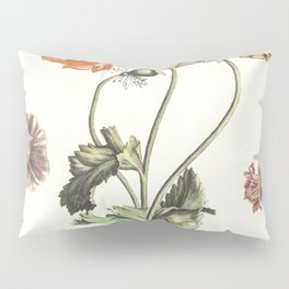 Three poppies two butterflies a fly and a dragonfly by Johan Teyler (1648-1709) Pillow Sham