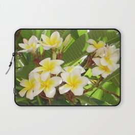 White and Yellow Frangipani Flowers with Leaves in Background  Laptop Sleeve