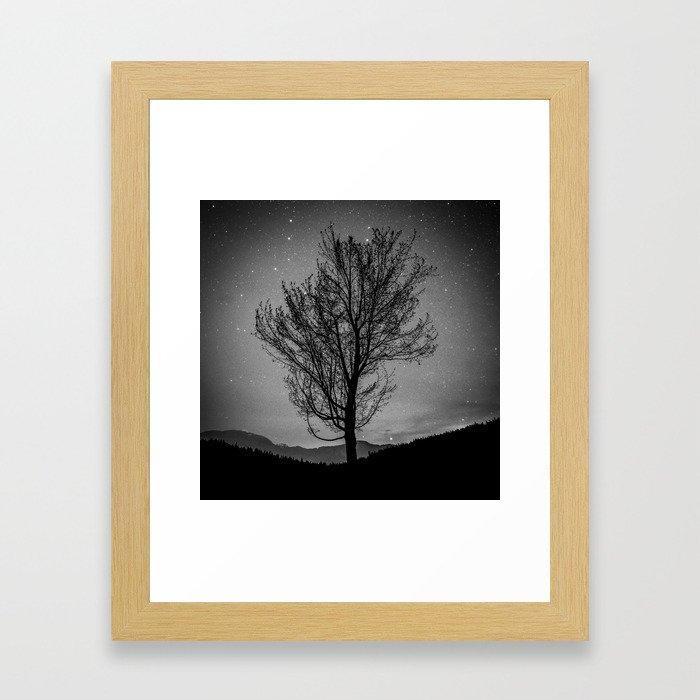 Lost lake solo tree Framed Art Print