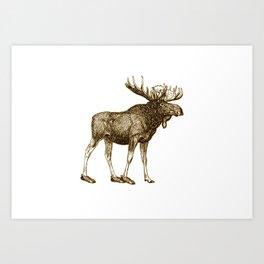 Moose Lost His Shoe Art Print