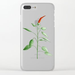 Little Hot Chili Pepper Plant Clear iPhone Case