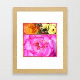 Bright Roses Framed Art Print