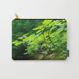 A path to an adventure Carry-All Pouch