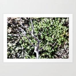 Nature's Corse Art Print