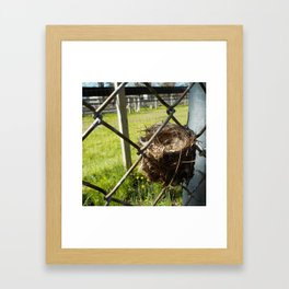 Fencey meeting you here Framed Art Print