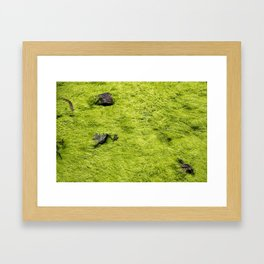 Mat Framed Art Print