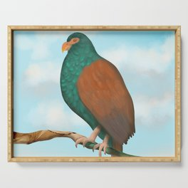 The Tooth-billed Pigeon (Little DODO) up on a Branch Serving Tray