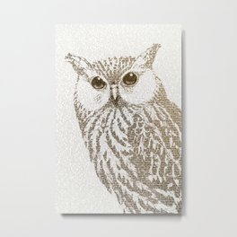The Intellectual Owl Metal Print