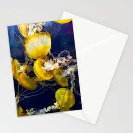 The PCH Stationery Cards