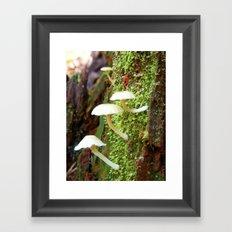 Ferngully Framed Art Print