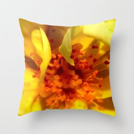 Pollen Macro Photography By Saribelle Rodriguez Throw Pillow