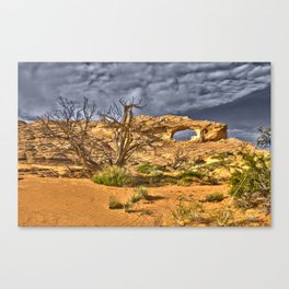 Arch in HDR Canvas Print