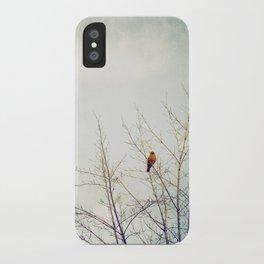 Bird in Tree Photography, Robin Birds Sky Photo, Tree Branches iPhone Case