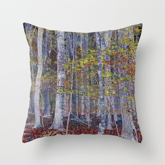 You Hiked while I Stood Still Throw Pillow