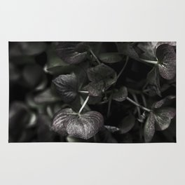 Hello Fall - Hydrangea Rug
