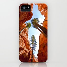 Trees at Bryce Canyon  iPhone Case