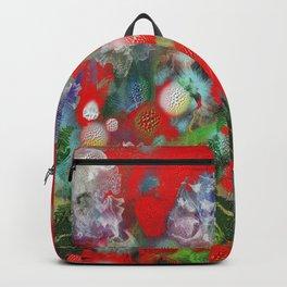 Pattern 21 Backpack