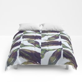 The Olive Branch Show Comforters