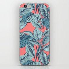 Pink Exotic Tropical Banana Palm Leaf Print iPhone & iPod Skin