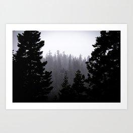 Frozen Pines Art Print