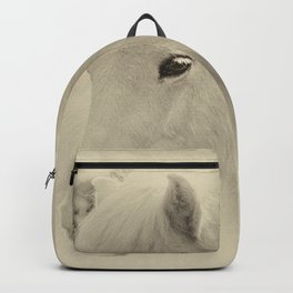Dreaming Horse Backpack