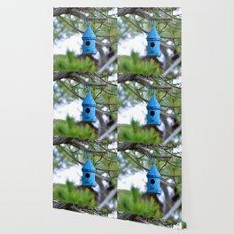 Empty Bird House Wallpaper