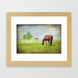 Grazing Framed Art Print