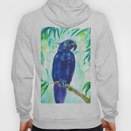 Hyacinth macaw Hoody