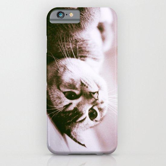 UPSIDE DOWN CAT iPhone & iPod Case
