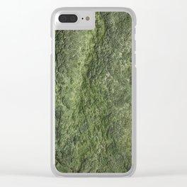 GeologyRocks-45 Clear iPhone Case