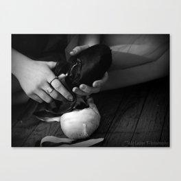 Ballet Slipper Canvas Print