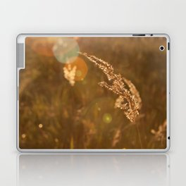 Last Days of Summer Laptop & iPad Skin