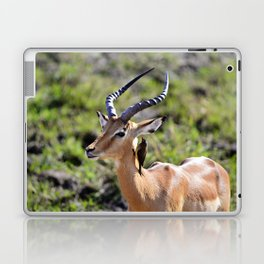 Wildlife Gossip Laptop & iPad Skin