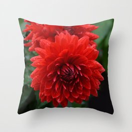Fresh Rain Drops - Red Dahlia Throw Pillow