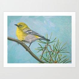 Pine Warbler Art Print