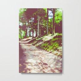 Walk With Me II Metal Print