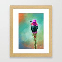 Pretty litte hummingbird Framed Art Print
