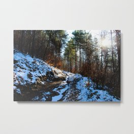 Road covered with snow Metal Print