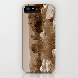 The Scenic Route iPhone Case