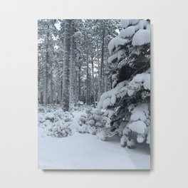 Fresh Sierra Powder Metal Print